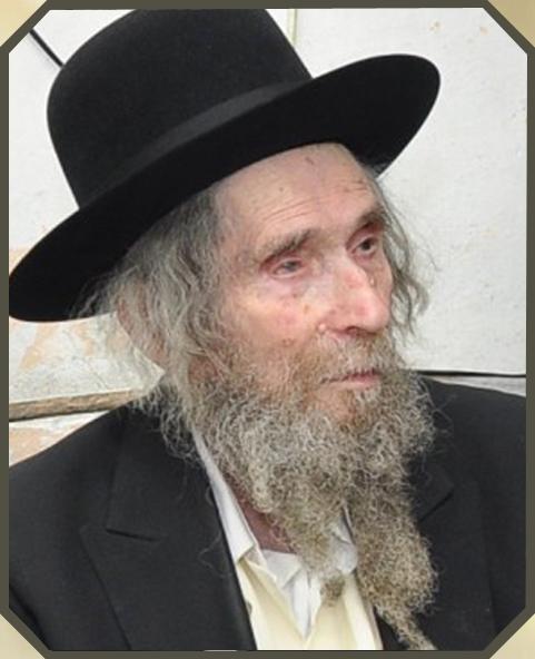 Le Rav Aharon Leib Shteinman zatsal